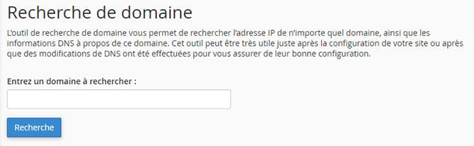 Recherche_de_domaine_DNS