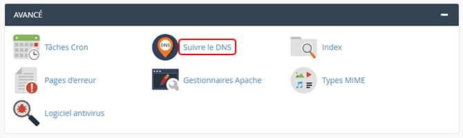 Suivre_le_DNS